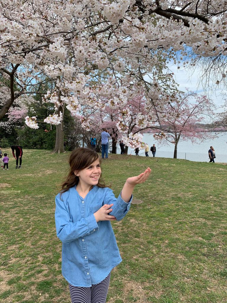 Sasha pointing at a cherry blossom branch